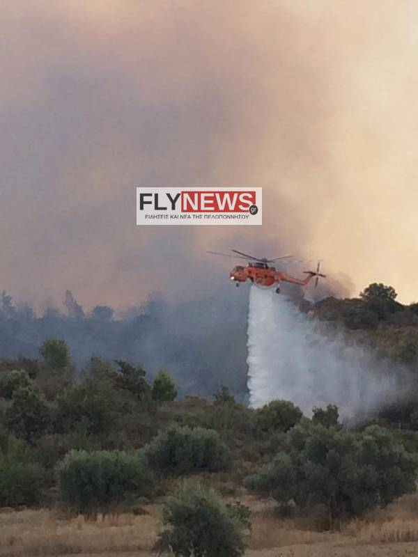 fwtia100-flynews