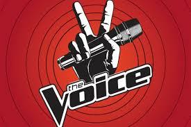 voice-flynews
