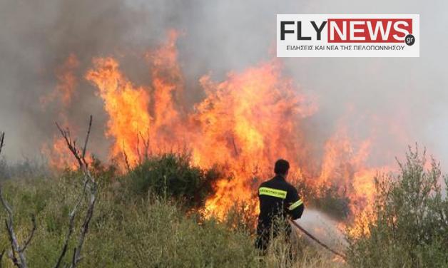 fotiakorinthia-flynews