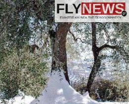eliaxioni-flynews